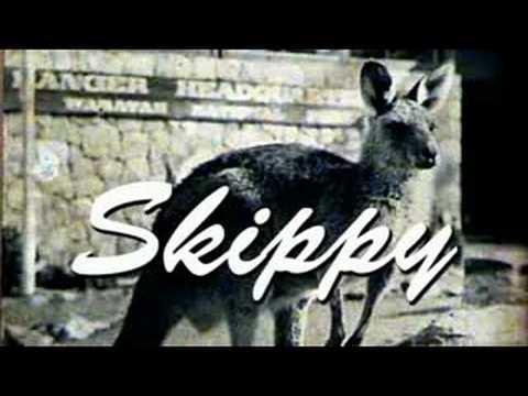 skippy-le-kangourou_29581_6261.jpg